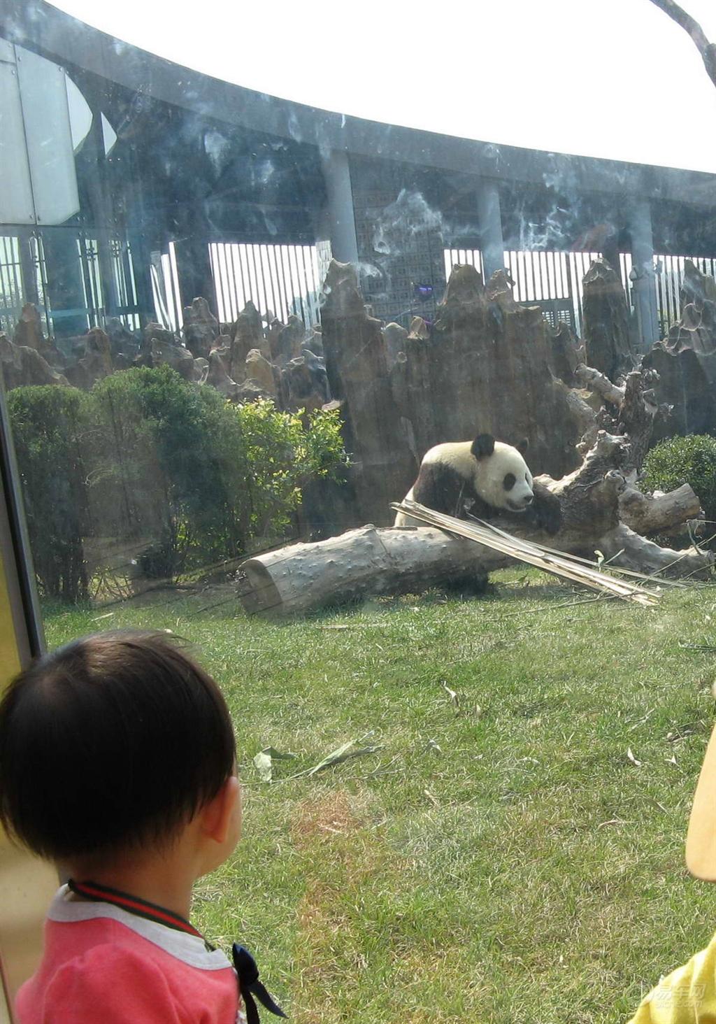 【【原创】去大连森林动物园大