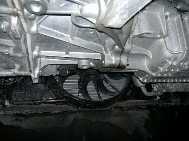 新福克斯发动机漏油问题高清图片