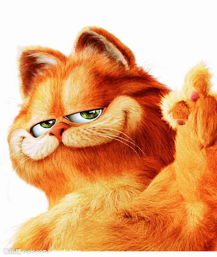 qq可爱加菲猫头像