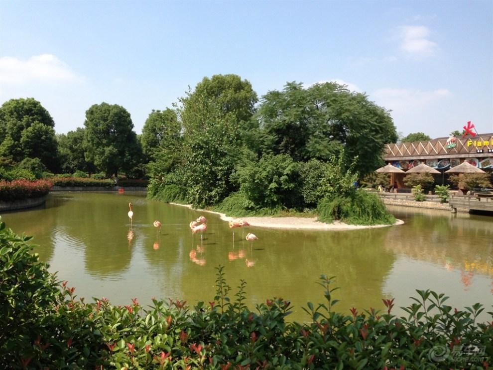 12】常州淹城动物园欢乐游(一)