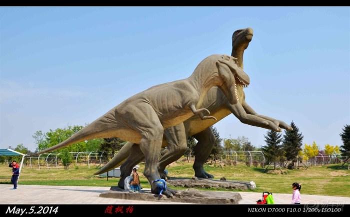 宝宝 霸王龙/霸王龙又名暴龙,学名雷克斯暴龙,英文名Tyrannosaurs.Rex,...