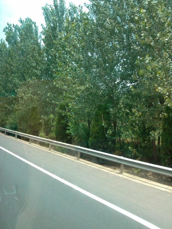 壁纸 道路 高速 高速公路 公路 桌面 700_933 竖版 竖屏 手机