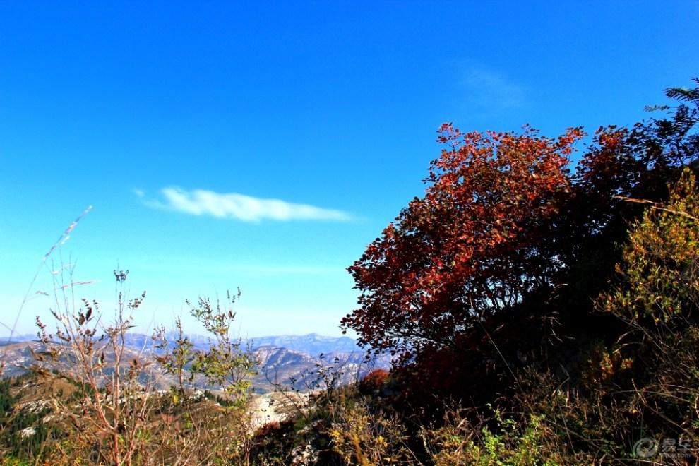 【【发现秋日色彩】秋高气爽、天空湛蓝】_摄