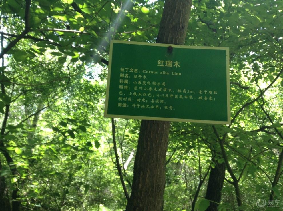 【【原创首发】游甘泉劳山国家森林公园】_陕西论坛