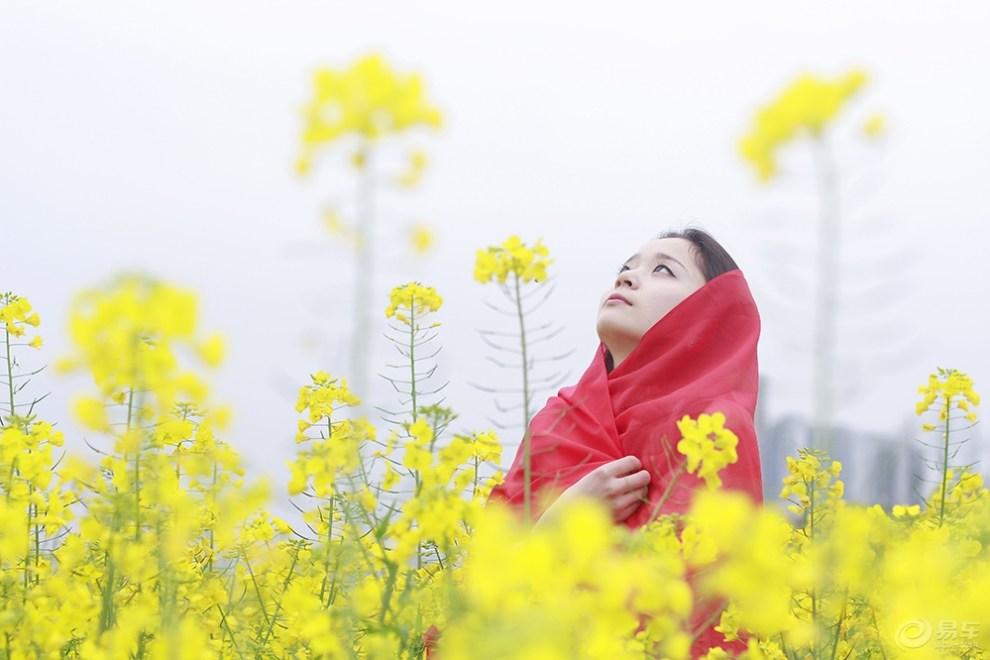 【【美女背影】油菜花长发论坛靓】_v美女图片佳人美女头像魅力花丛图片