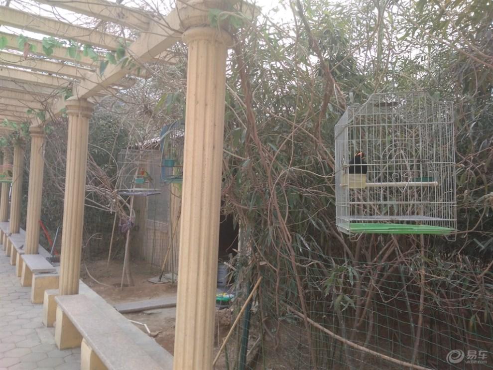 【五龙山野生动物园论坛值得一去】_河南攻略伊苏手游游记图文图片