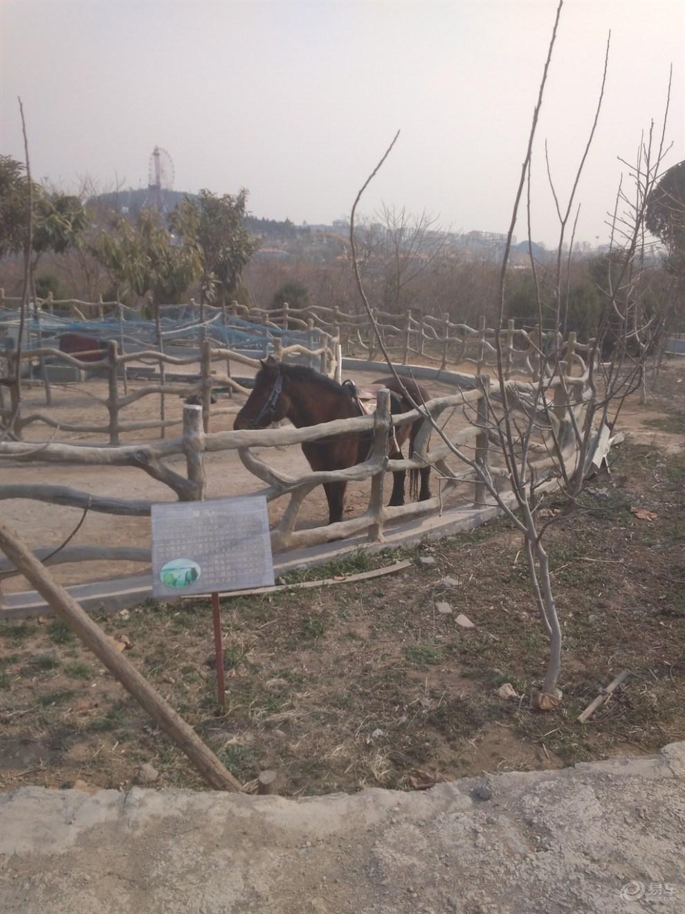【五龙山野生动物园攻略值得一去】_河南游记三亚三天自由行论坛图片