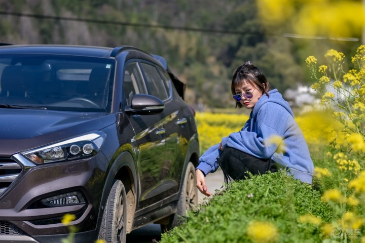 待到山花烂漫时,她在丛中笑