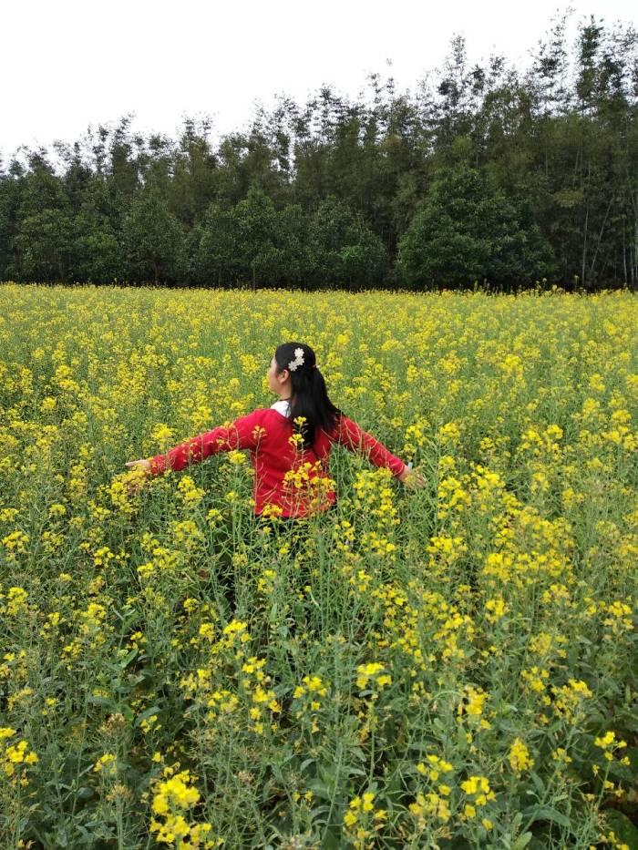 美好四月天,踏青赏花好时节