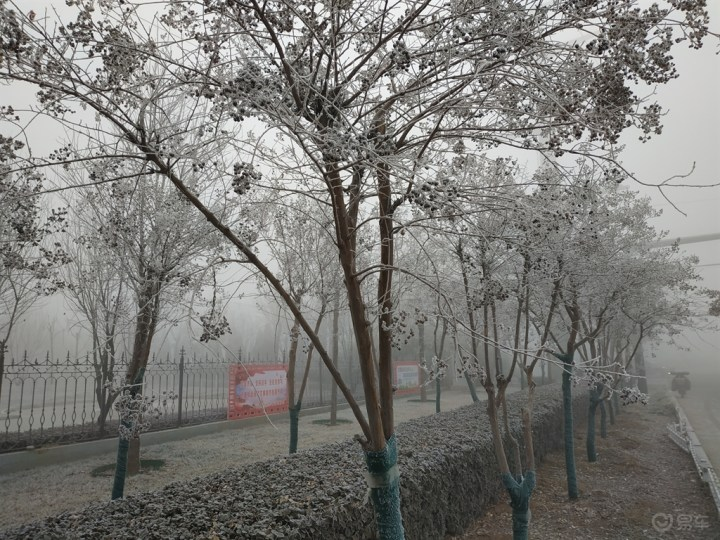 大雾之下,也有美景