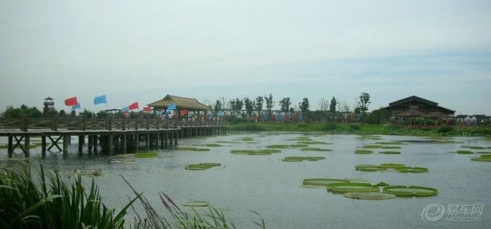 【荷塘月色湿地公园风景图片_最新保定图片】_易车网