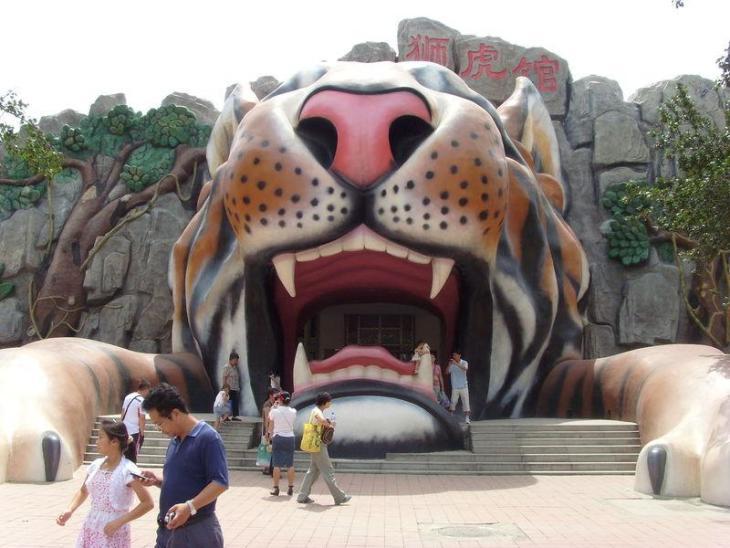 【天津动物园周边自驾游_天津动物园自驾游路线攻略