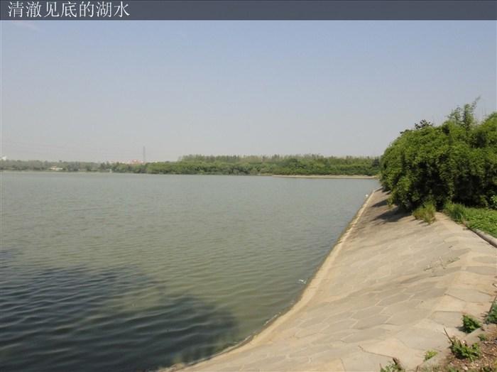 景逸社区 竹叶海公园 远离喧嚣的城市,寻找一片宁静 景逸社区图片
