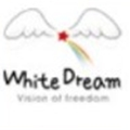淘淘的白色梦想