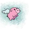 一只飞上天的猪