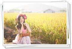 【李逍遥美女人像】小夏的秋日稻田写真