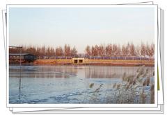 【答主自驾游】冬季与大自然的亲密接触,在北京也可以感受不一样的景色