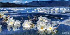 泸沽湖的美,你无法用语言描述!