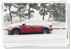 瑞雪兆丰年回忆2020最后一场雪