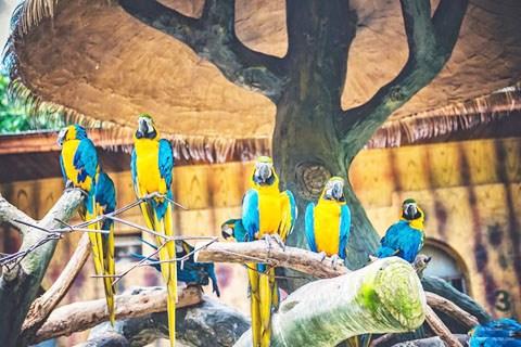 周末全家自驾出行,动物园参观珍禽野兽