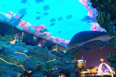 【我要新年台历】蓝色海洋跨年夜--生活需要仪式感