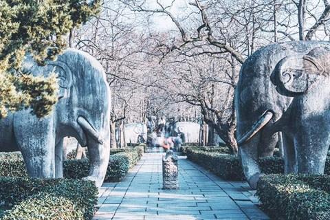 秦淮河畔,漫游南京