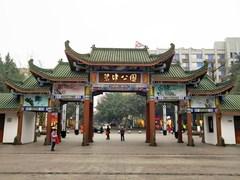 【木头系列】重庆碧津公园登高望远。