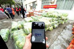 """【""""易""""不容辞】广东车友为抗疫""""易""""线的人员捐赠10吨蔬菜"""